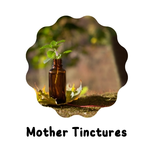 Mother Tinctures